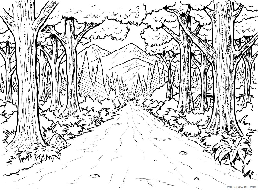 - Amazon Rainforest Coloring Pages With Animals Coloring4free -  Coloring4Free.com