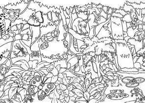 Amazon Rainforest Coloring Pages Coloring4free Com