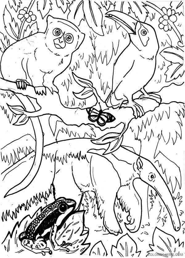 Animals In Amazon Rainforest Coloring Pages Coloring4free -  Coloring4Free.com