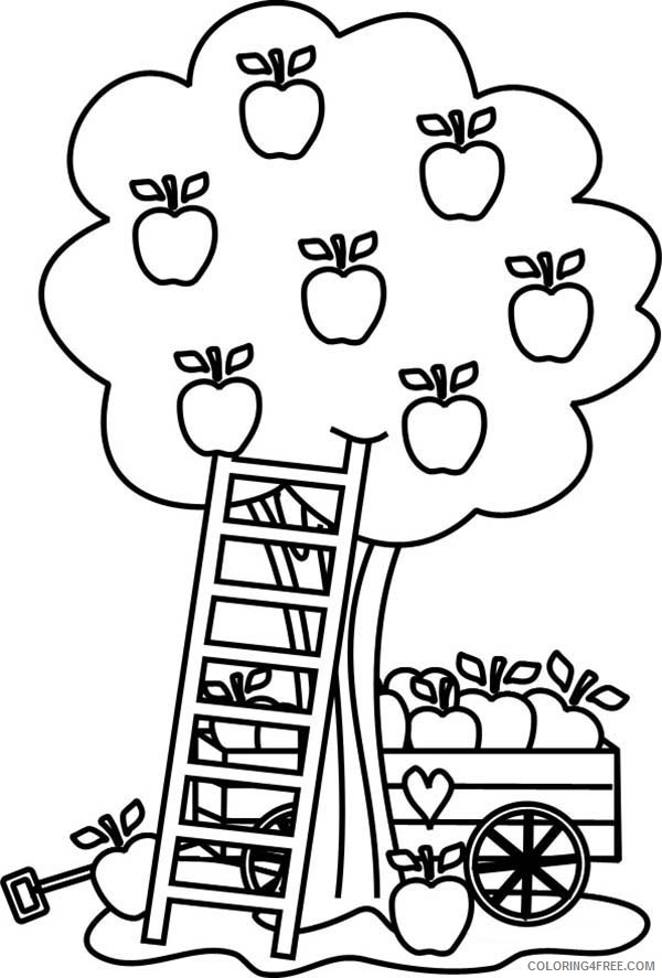 Apple Coloring Pages For Toddler Coloring4free Coloring4free Com
