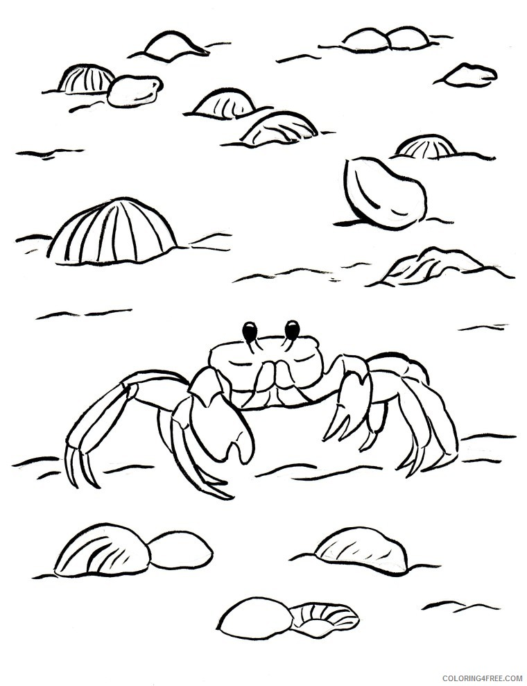 Crab Coloring Pages At The Beach Coloring4free - Coloring4Free.com