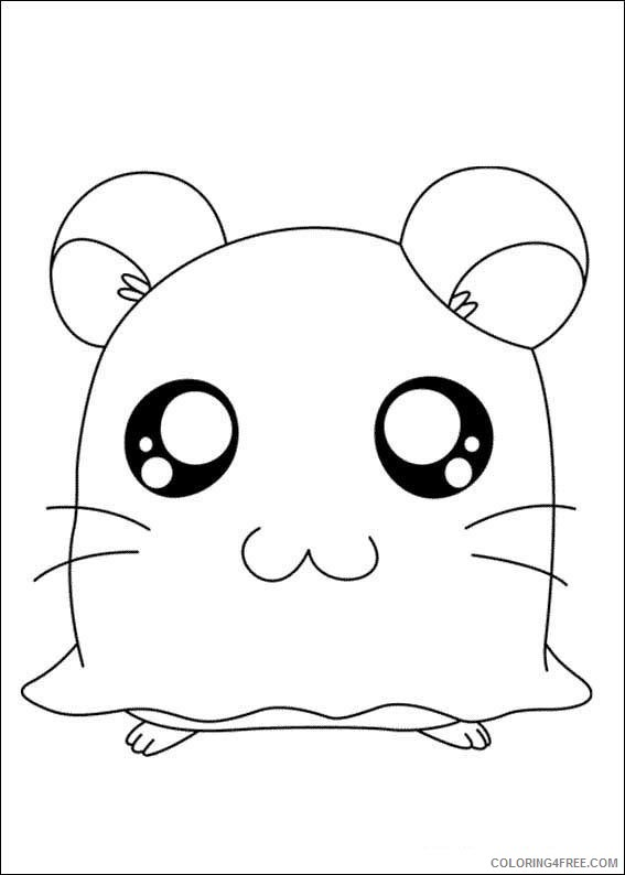Cute Hamster Coloring Pages To Print Coloring4free Coloring4free Com