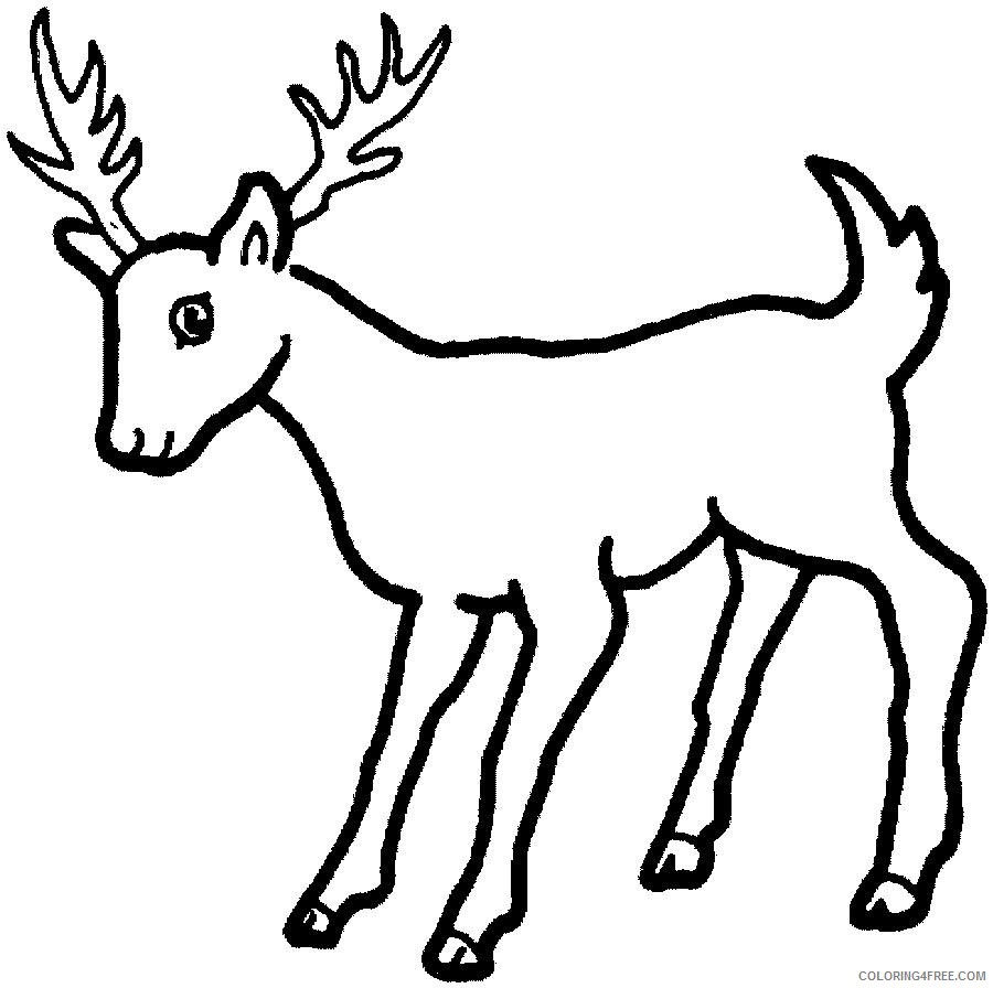 deer coloring pages printable for kids Coloring4free ...