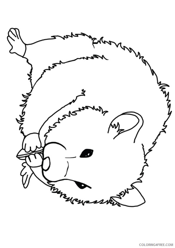 hamster coloring pages seating sunflower seeds Coloring4free ...