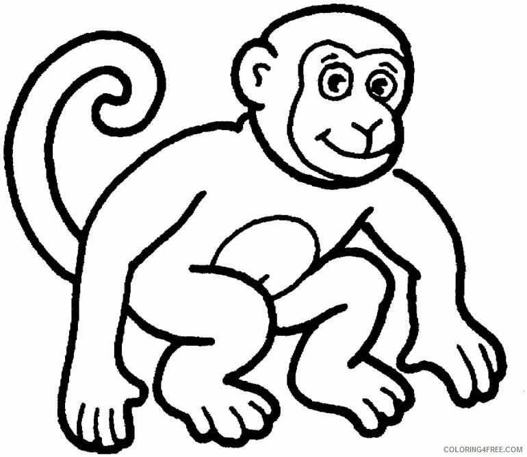 Free Monkey Coloring Transparent & PNG Clipart Free Download - YAWD | 667x770