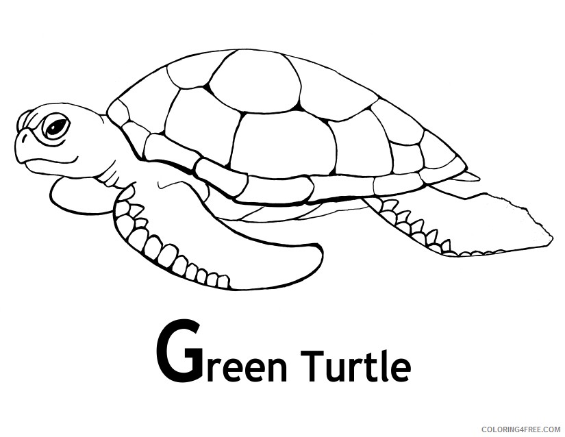 - Sea Turtle Coloring Pages Green Turtle Coloring4free - Coloring4Free.com
