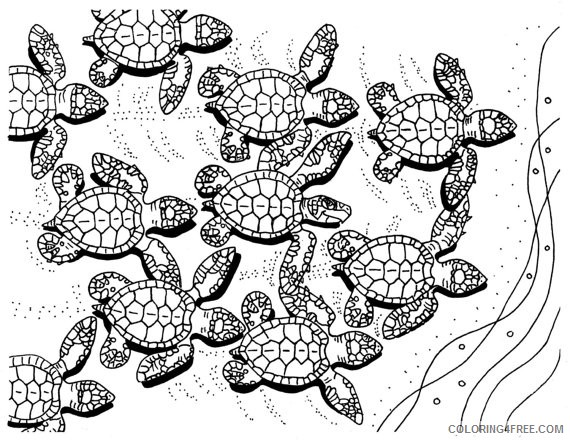 - Sea Turtle Hatchlings Coloring Pages Coloring4free - Coloring4Free.com