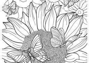 Sunflower Coloring Pages Coloring4free Com
