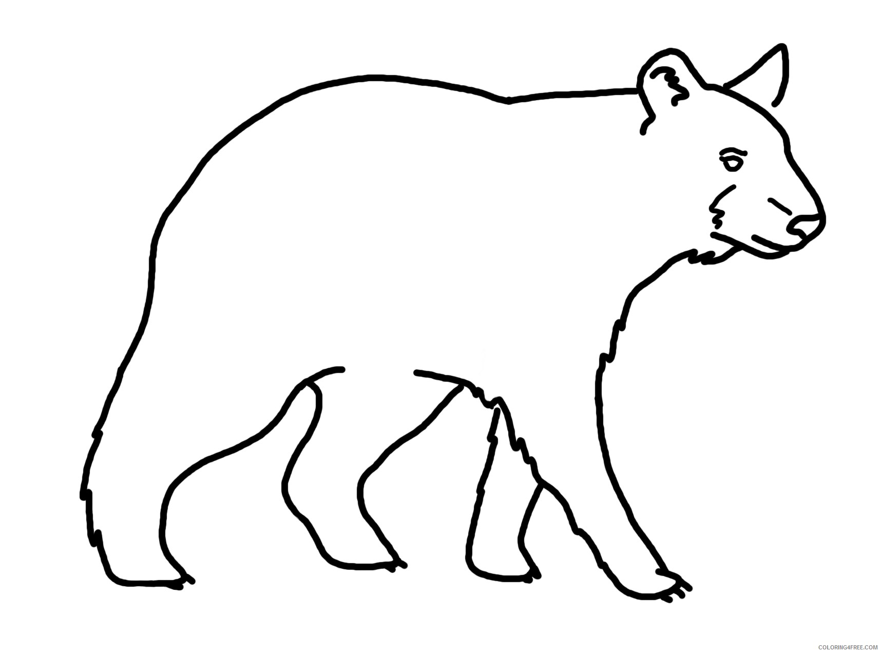 29 bear line drawing that you can download to you efgAII coloring