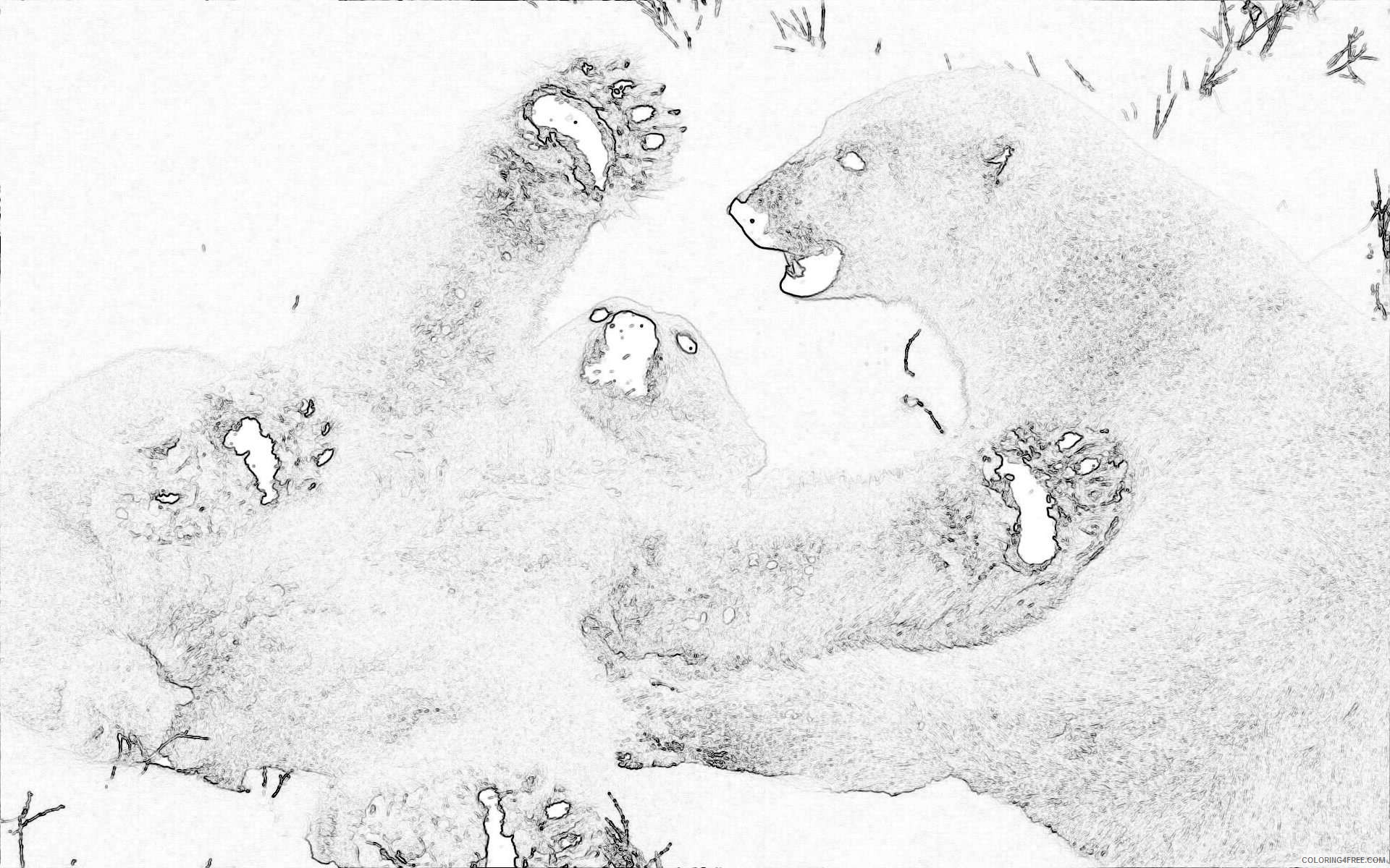 back gallery for bear cub climbing silhouette 4yTwtO coloring