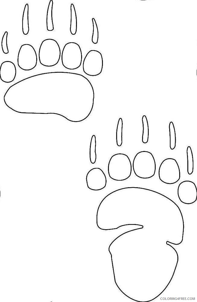 bear paw decal q3UUGj coloring