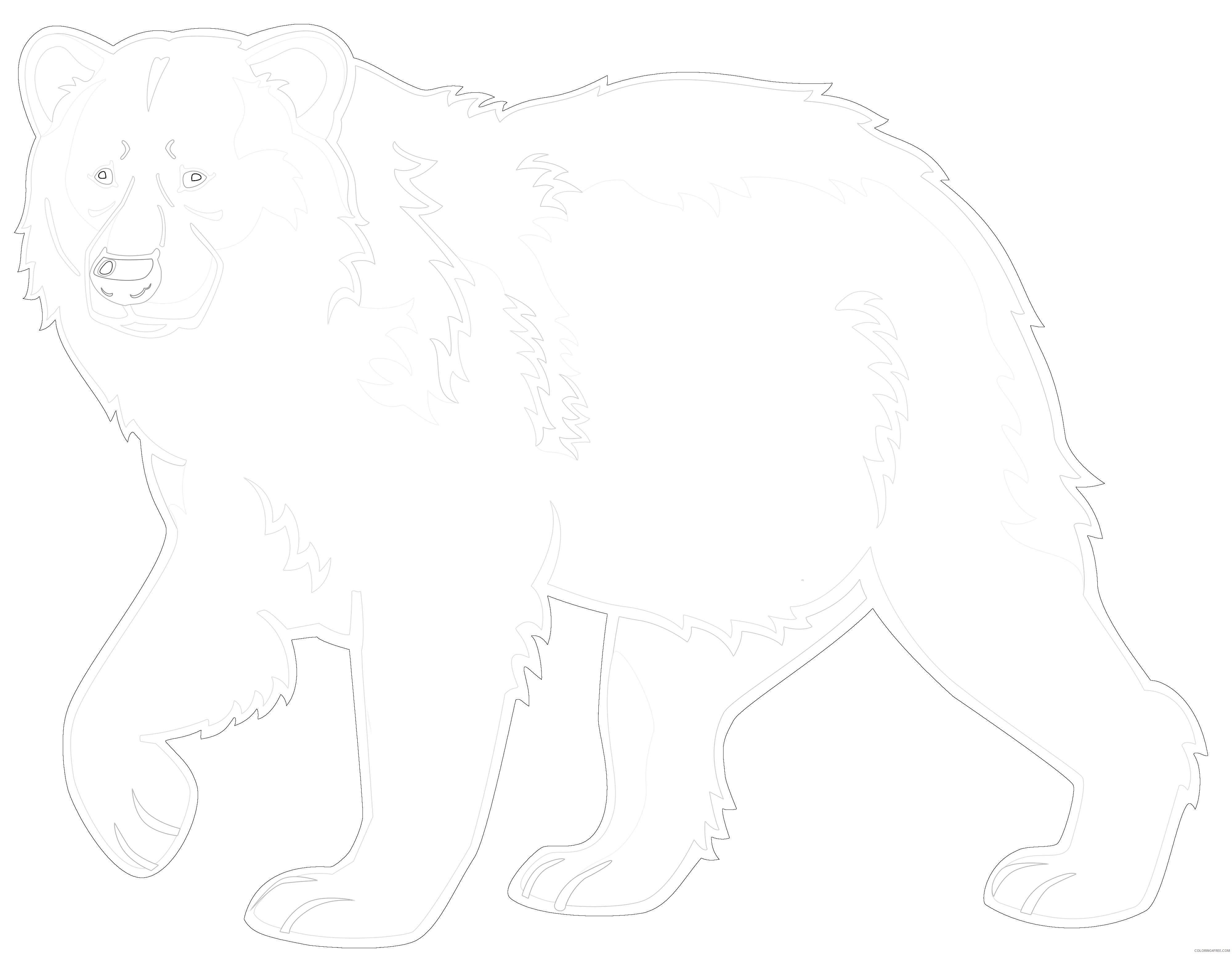 bear polar bear pics 2wiz 2 coloring