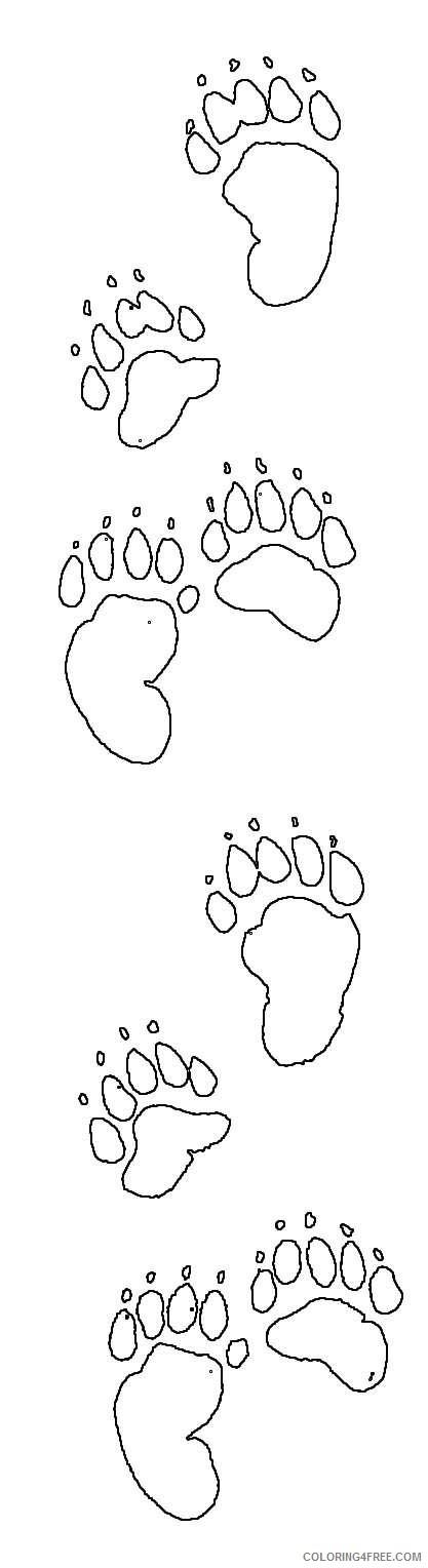 black bear co BwYyEe coloring