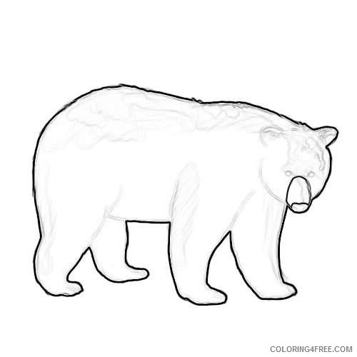 black bear outline best MJBlAz coloring