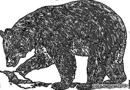 black bear tJ7m36 coloring
