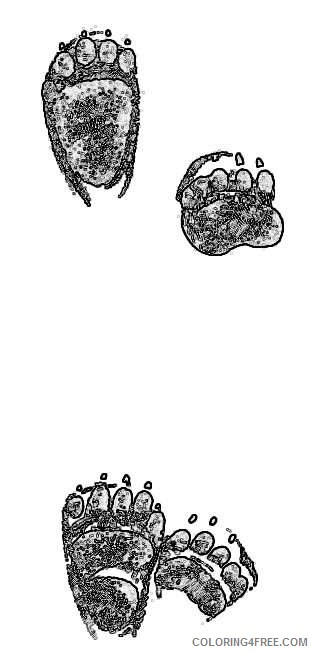 brown bear tracks http www wpclipart com animals tracks brown bear 0Mog1W coloring