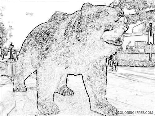 bruin bear 1469653870 9bdf87ccc3 jpg kGU3tF coloring