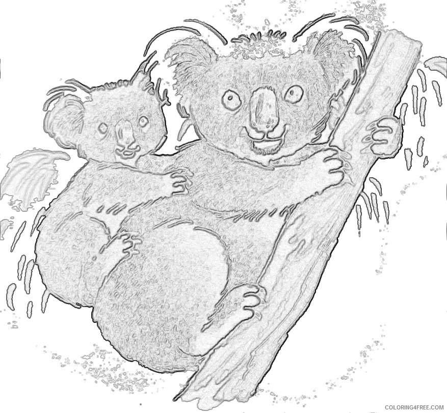 clipart of koala koala koala bear presley s book Li8l7W coloring