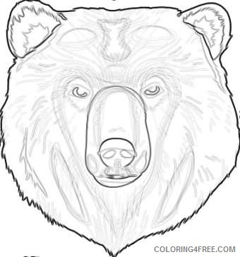 grizzly bear Sa4jQW coloring