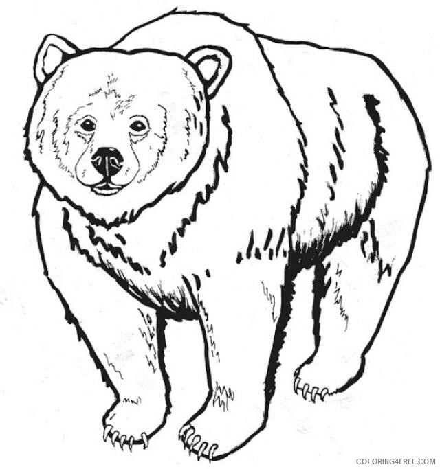 grizzly bear coloring page 0XskUp coloring