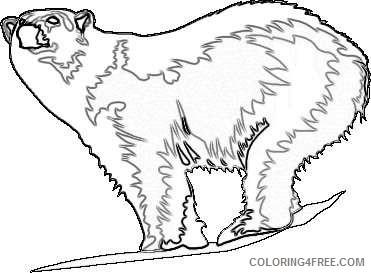 polar bear bearcow coloring