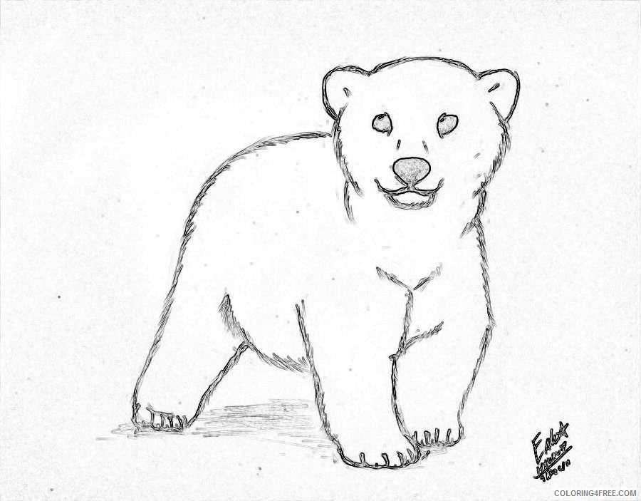 polar bear cub by hauru7 on deviantart pY7Uxb coloring