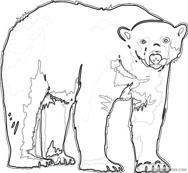 polar bear new calendar template site kqBnmC coloring