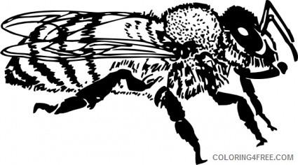 queen bee black and white honey bee black YJA3e2 coloring
