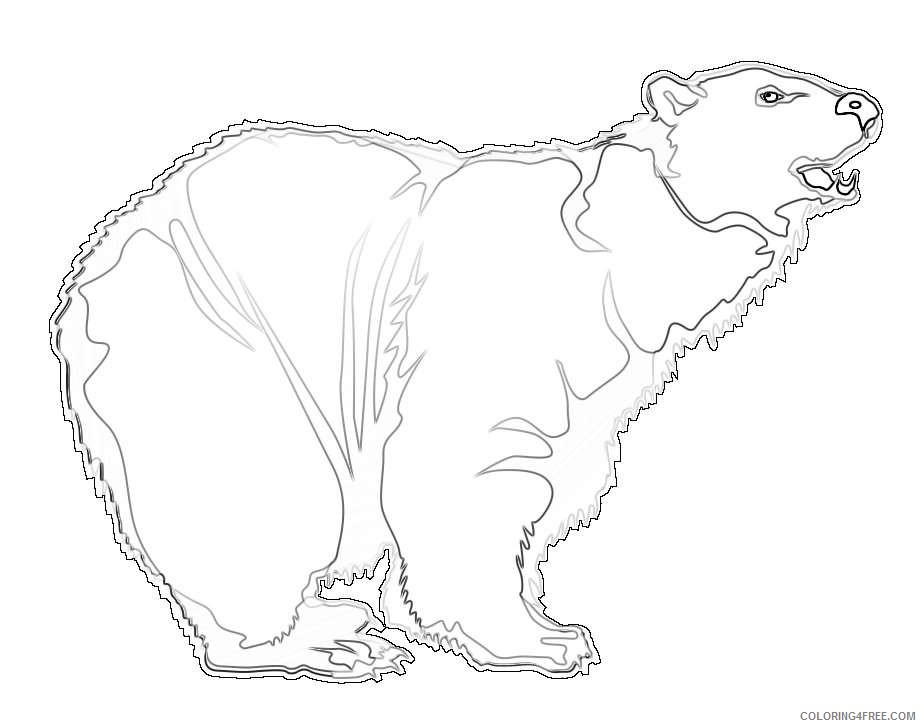 to use public domain bear AflRTe coloring