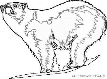 tundra animals polar bear7 gif 2OxJeN coloring