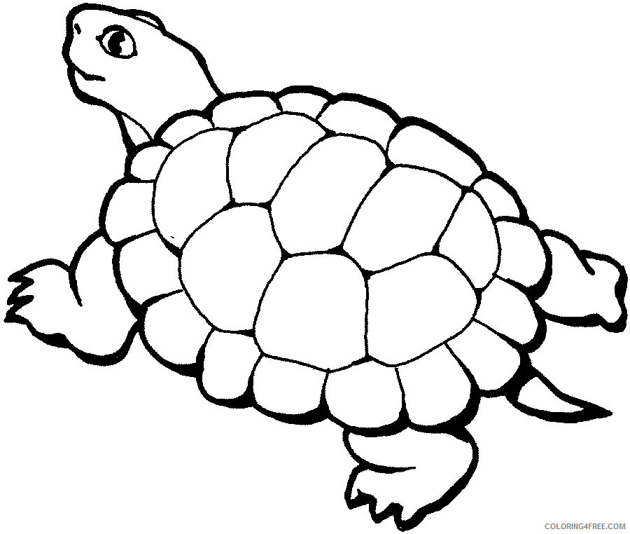Animal Coloring Pages Coloring Pages animals dr odd Printable Coloring4free
