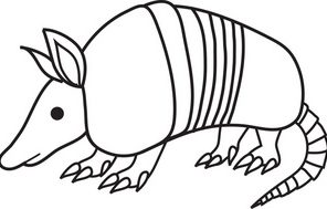 Armadillo Coloring Pages Coloring4free Com