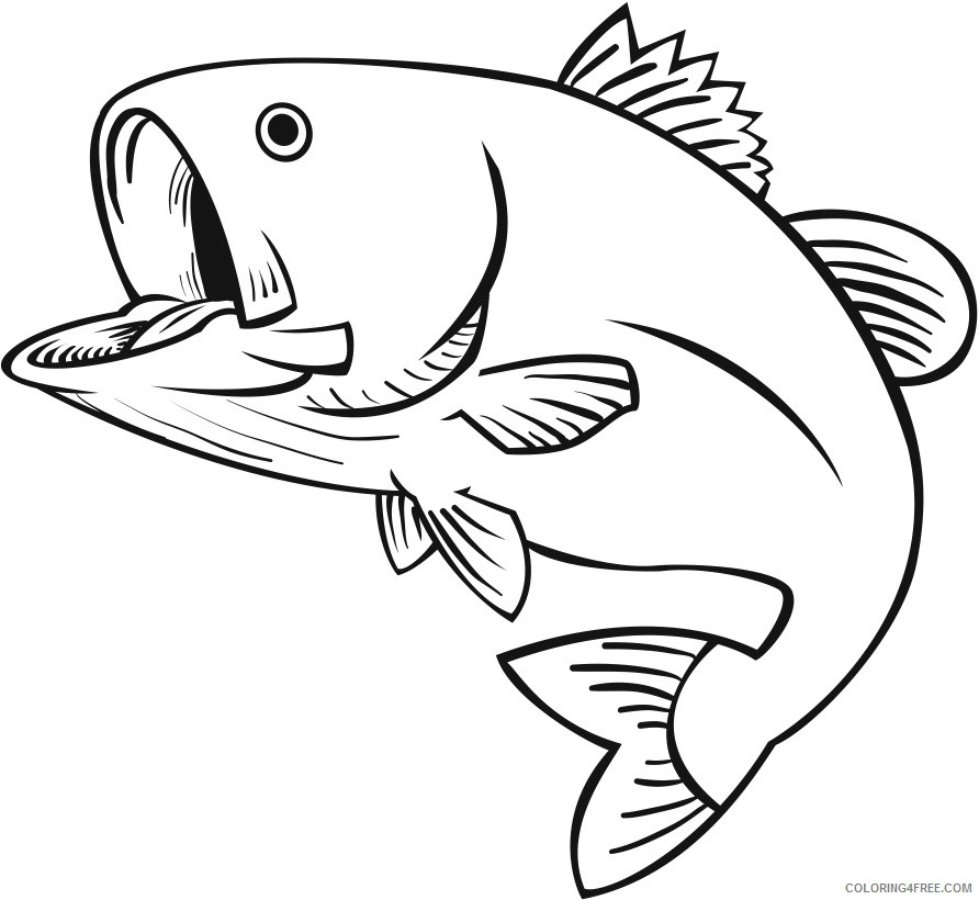 Bass Fish Coloring Pages 12 drawings of bass fish Printable Coloring4free