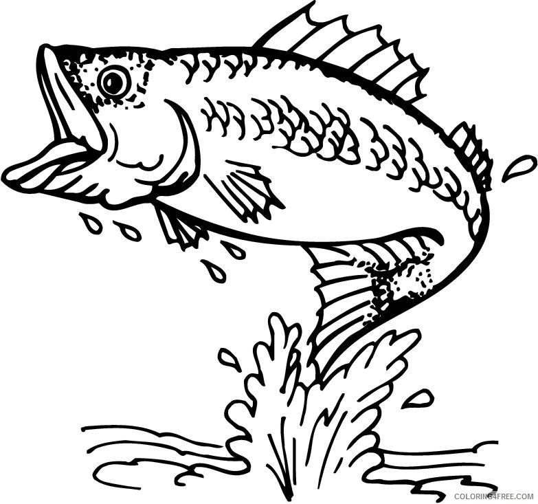 Bass Fish Coloring Pages bass fish images pictures Printable Coloring4free