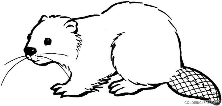 Beaver Coloring Pages cartoon beaver images best Printable Coloring4free