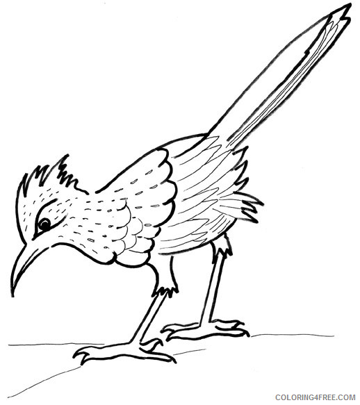 Road Runner and wolf coloring page | 583x518
