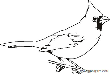 Bird Outline Coloring Pages Cardinal Bird Outline Drawing Clipart Printable Coloring4free Coloring4free Com
