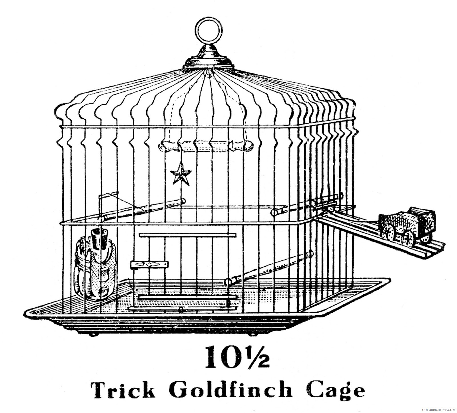 Birdcage Coloring Pages vintage trick bird Printable Coloring4free