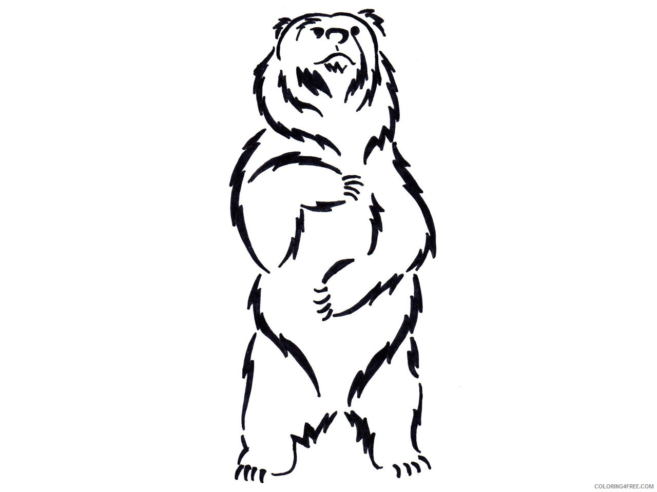 Black Bear Coloring Pages standing black bear drawing Printable Coloring4free