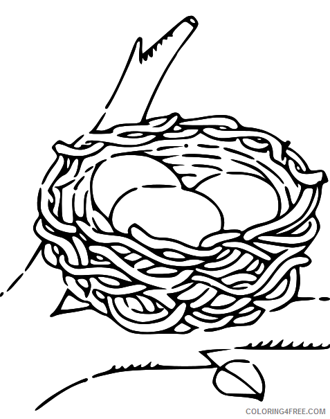 Black and White Bird Coloring Pages empty bird nest black Printable Coloring4free