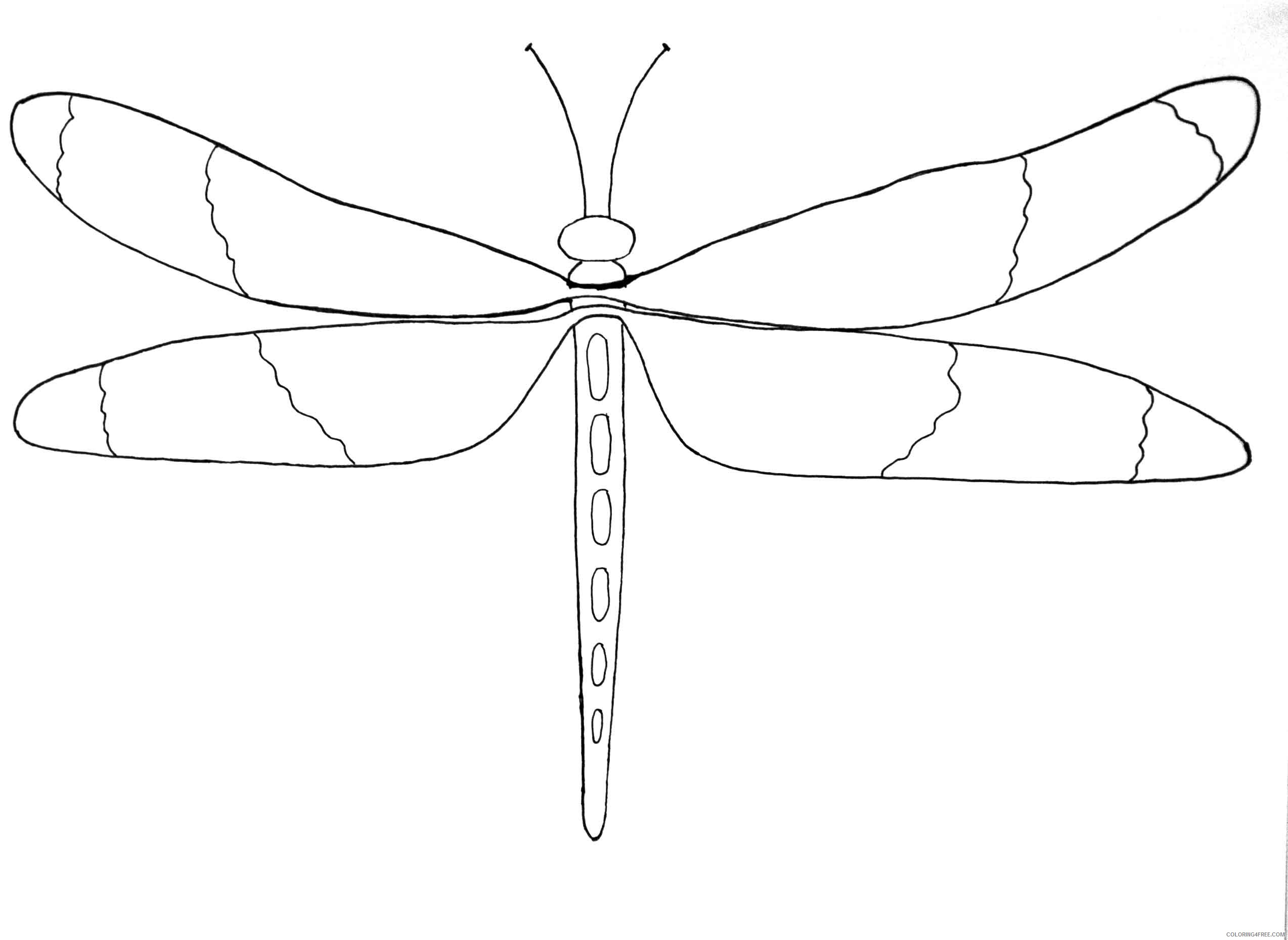 Black and White Bug Coloring Pages bug patterns just paint it Printable Coloring4free