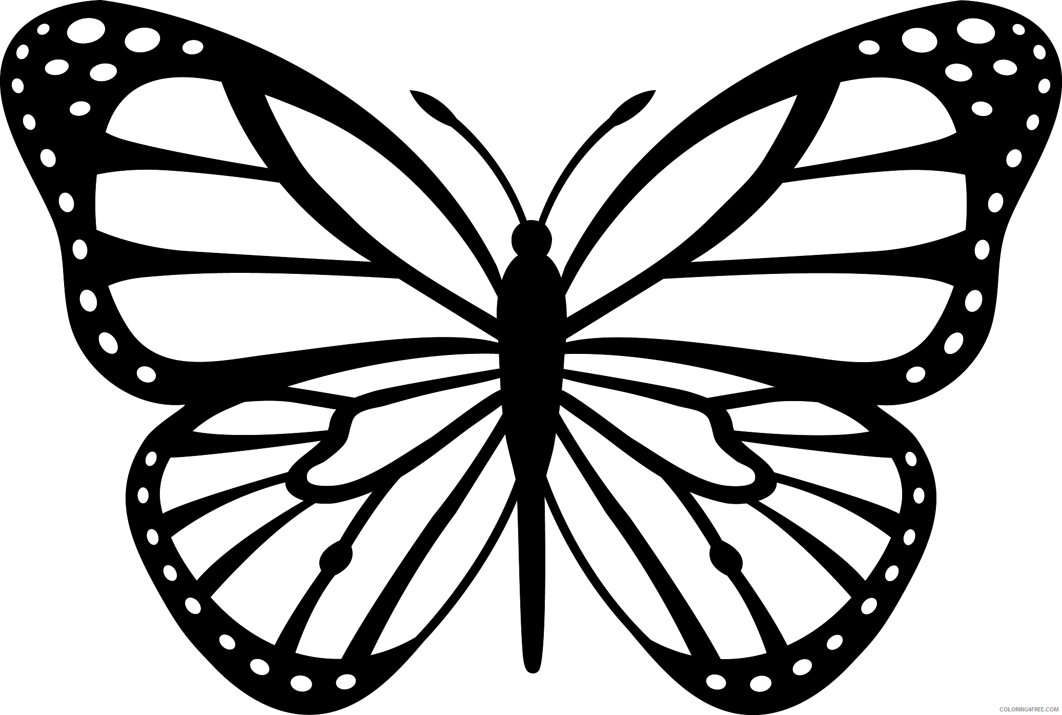 Black and White Butterfly Coloring Pages butterfly Printable Coloring4free