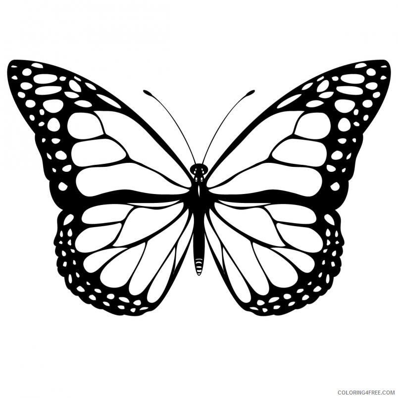 Black and White Butterfly Coloring Pages butterfly clip Printable Coloring4free