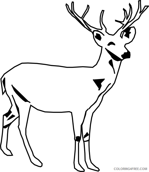 Deer Head Coloring Page from Animals Coloring Pages category. Find ... | 594x516