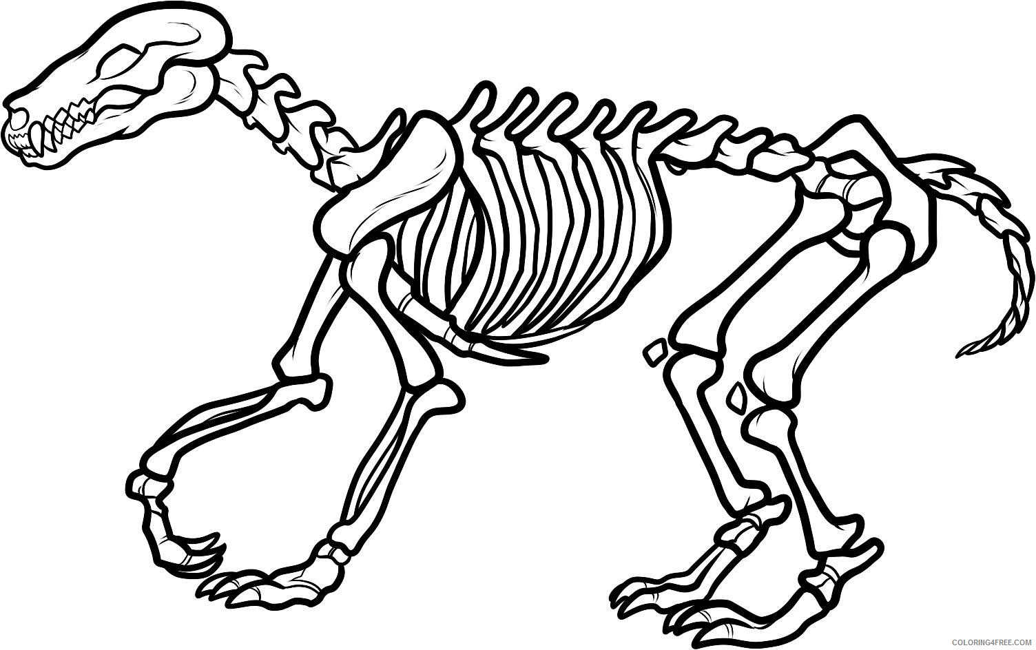 Black and White Dinosaur Coloring Pages dinosaur skeleton page Printable Coloring4free