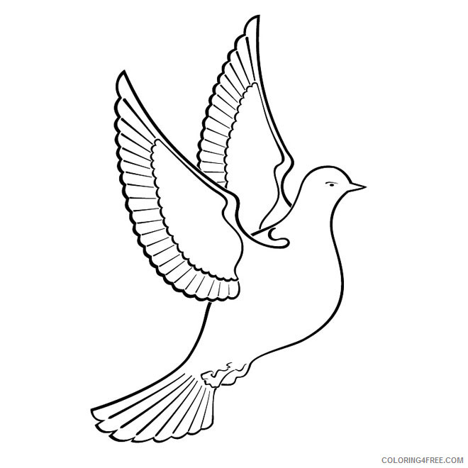 Black and White Dove Coloring Pages dove free vector freevectors Printable Coloring4free