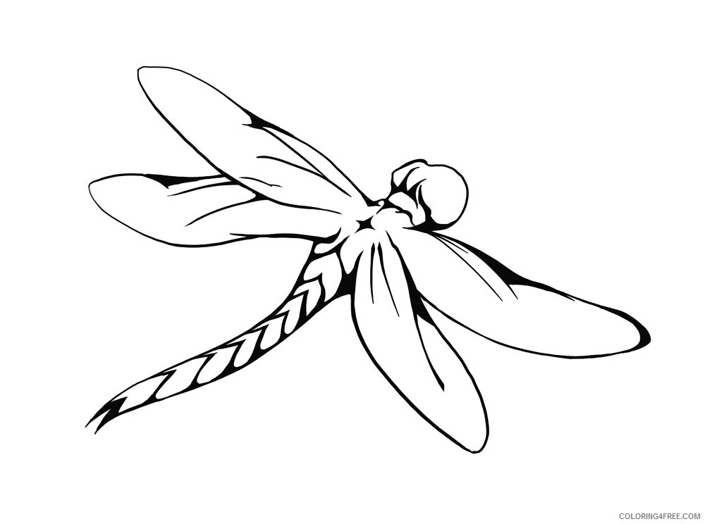 Black and White Dragonfly Coloring Pages drawing dragonfly car Printable Coloring4free