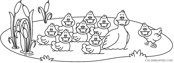 Black and White Duck Coloring Pages ducks qi6k4H jpg Printable Coloring4free
