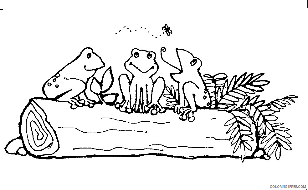 Black and White Frog Coloring Pages mormon share frogs on a Printable Coloring4free