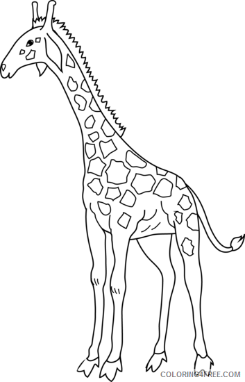 Black and White Giraffe Coloring Pages giraffe 81 png Printable Coloring4free